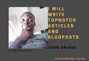 I will write topnotch articles/blog posts (100% UNIQUE)
