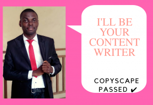 I Will Be Your Content Writer