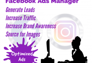 I will setup and optimize your Instagram and Facebook Ads