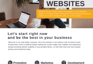 4281I will design a professional website, with creative and modern pages
